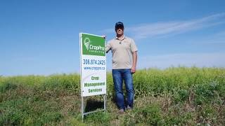 Crop Management Services from CropPro Consulting