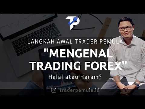 langkah-awal-trader-pemula---mengenal-trading-forex,-halal-atau-haram?