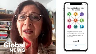 Digital privacy expert and former information commissioner of ontario ann cavoukian discusses the new canadian covid-19 contact tracing app e...