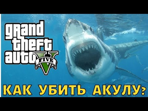 ГТА 5 Как убить акулу? | GTA 5