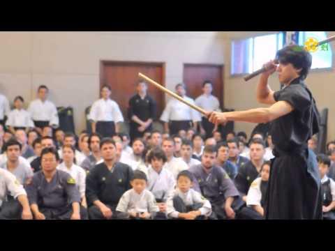 20 Anos - Hyoho Niten Ichi Ryu Kenjutsu Nito Seiho