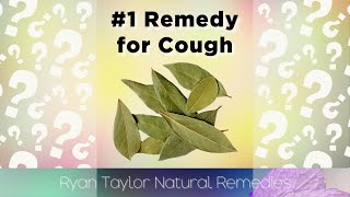 Stop Coughing With This Remedy (Bay Leaves) #Shorts