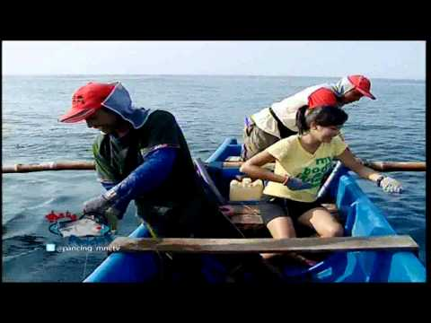 Mata Pancing MNCTV - Pesta Gurita di Pantai Tamban (16/11)