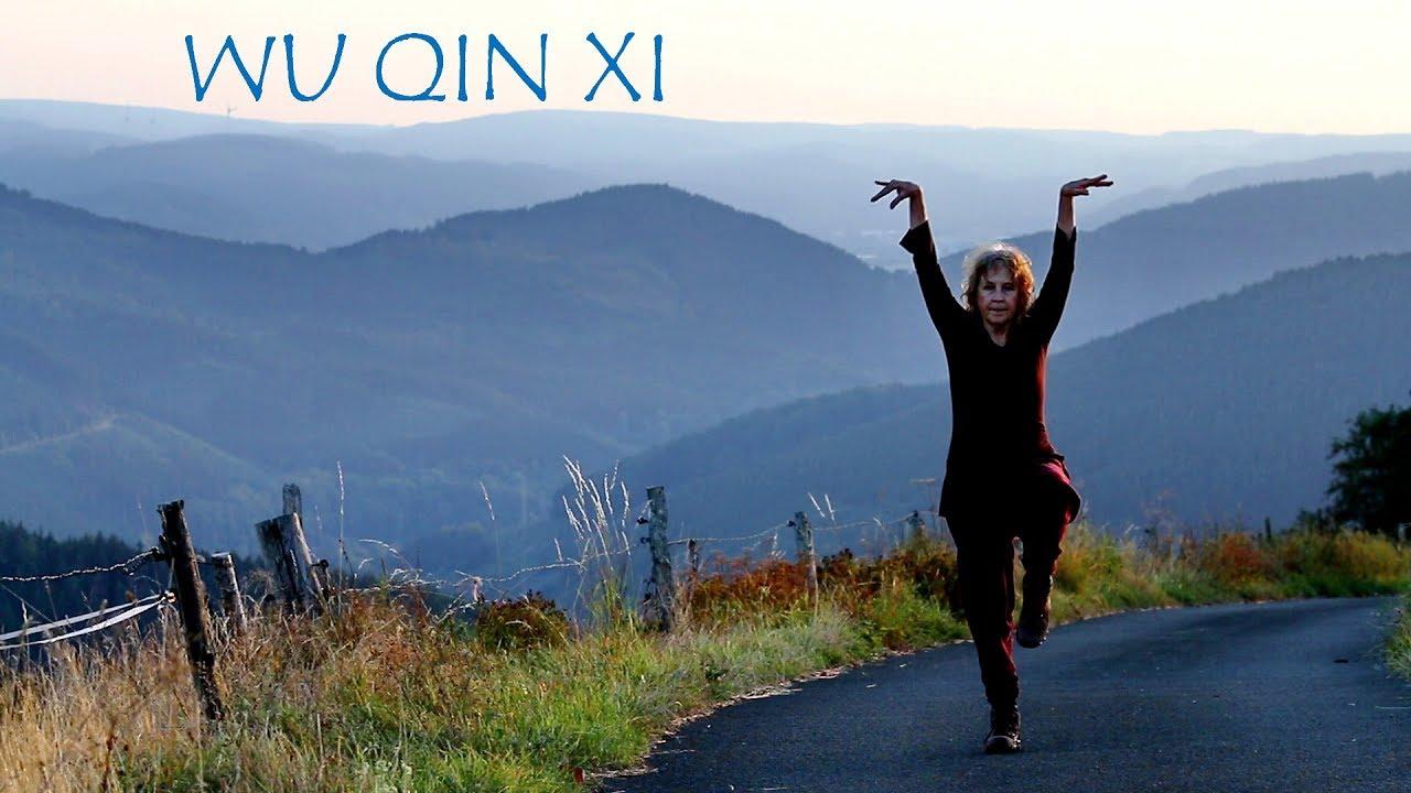 Wu Qin Xi - Five Animals Qigong exercises (HD)