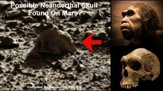 Possible Neanderthal Skull Found On Mars?