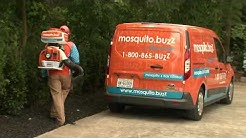 Innovation Oxford dives into mosquito control with Mosquito.buzz