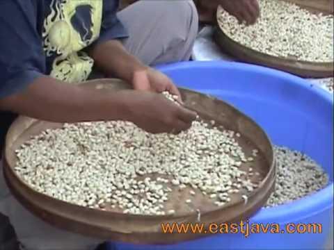 Tuban Traditional Food - Tuban -East Java