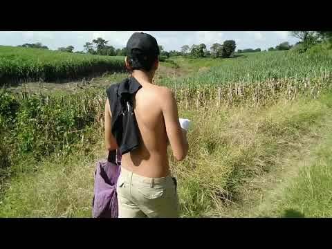 Vamos a aprender nahuat al CE INSA Santa Ana El Salvador from YouTube · Duration:  27 minutes 39 seconds
