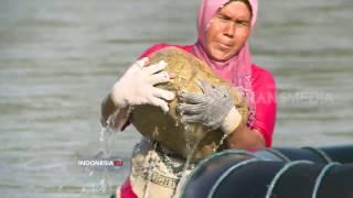 INDONESIAKU - SUNGAI MAS , ALIRAN SUNGAI PENGHIDUPAN KAMI (6/2/17) 3-1