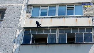 Падение с шестого этажа /Набережная 6/