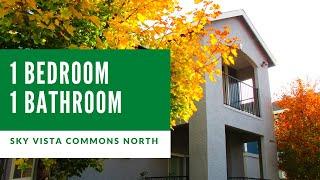 1 Bedroom/1 Bathroom Apartment Home Tour