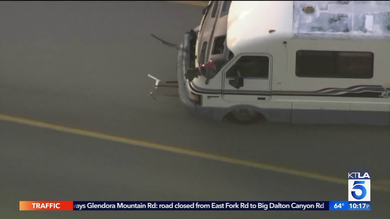 Dogs Involved in Wild RV Pursuit in San Fernando Valley Up for Adoption