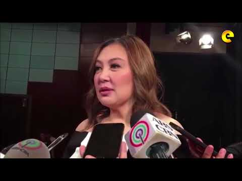 Sharon Cuneta Speaks Up On Rumored 'Marriage On The Rocks' With Husband
