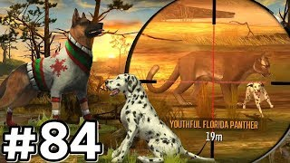 Hunting With EVERY DOG In Region 9 - The Everglades! Deer Hunter 2017 Ep84