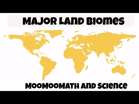 Major Biomes of the World for kids
