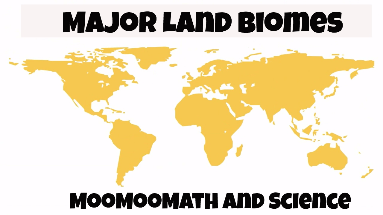 Major Biomes of the World for kids  YouTube