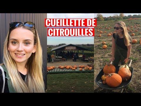 EXPLORE RIVE-NORD | La Cueillette De Citrouille à L'automne