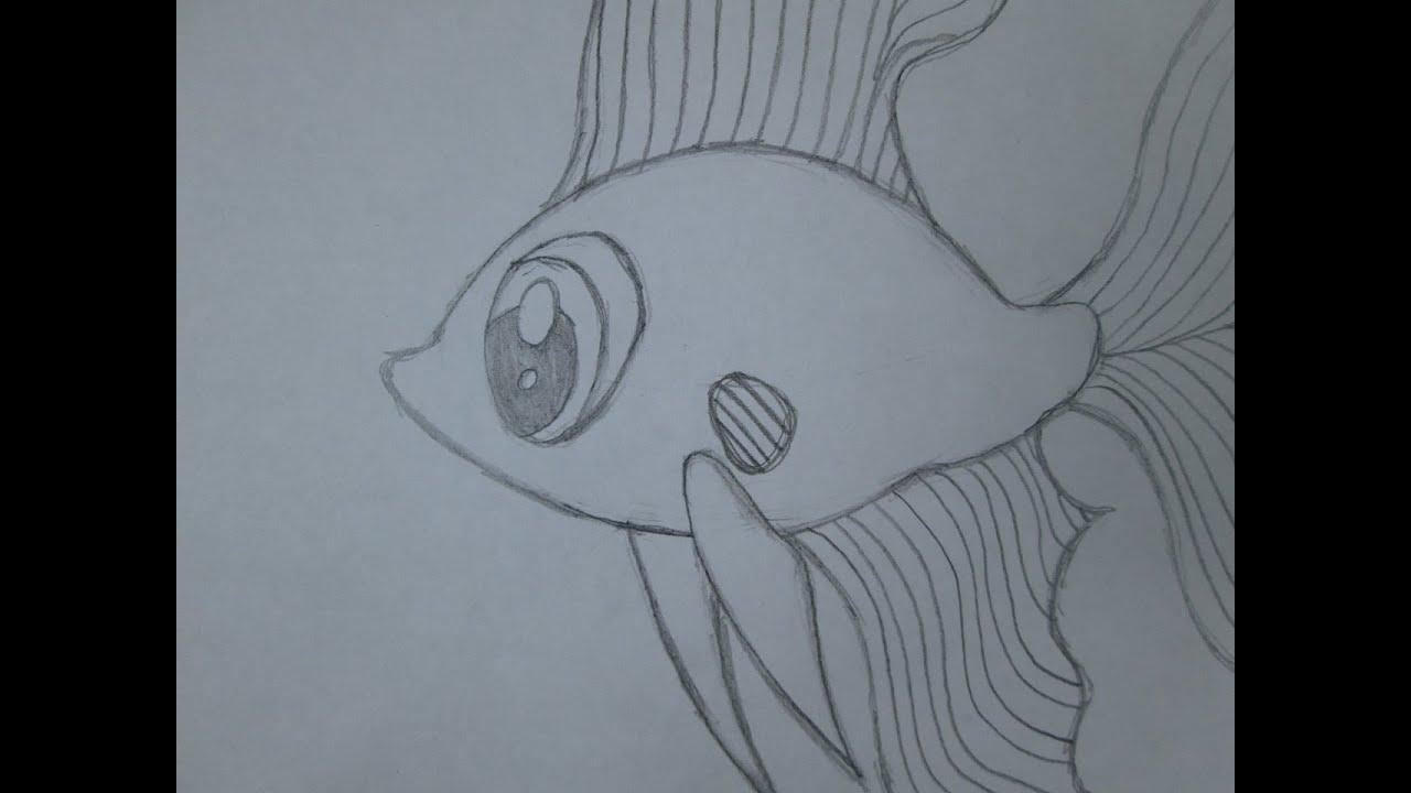 Cmo dibujar un pez beta  YouTube