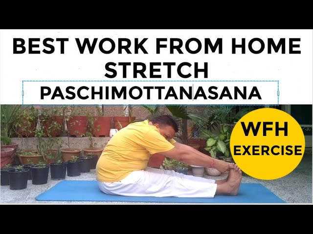 🆕Seated Forward Bend Paschimottanasana 👉Your Best Work From Home Exercise Stretch