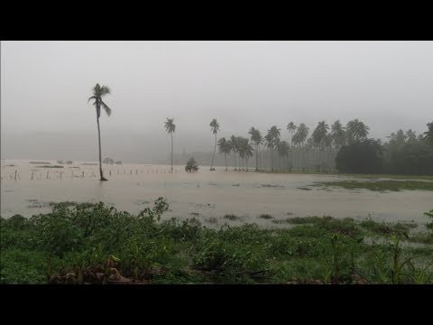 """Lance Brown in Mindanao - """"Consider this when buying land."""""""