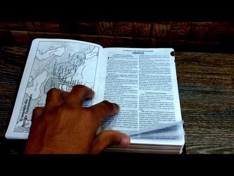 bíblia-sagrada-letra-grande,-concordância,-dicionário-e-harpa