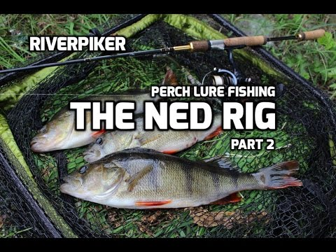 Perch lure fishing - Ned rig part 2 (Video 151)