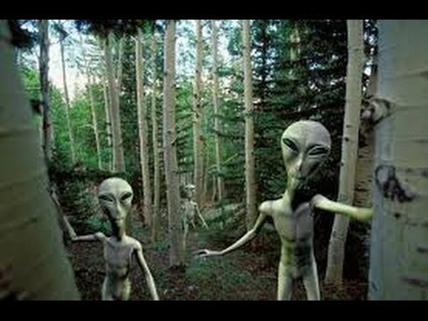 extraterrestre signes
