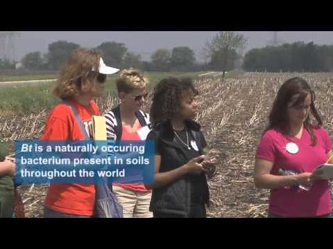 Moms learn about Biotechnology and Pesticides