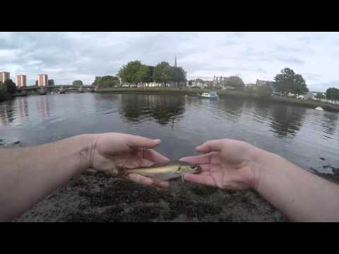 River Leven And Clyde Estuary September 2015