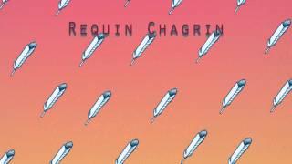Requin Chagrin - Adelaïde