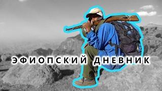 Эфиопские горы Сымен: бабуины-гелады и как варить вкусный кофе - Эфиопский дневник №07(