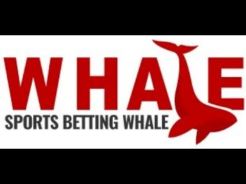 How the Sports Betting Whale Turned $2,500 into $33,822.38 in 27 Hours of Betting on Sports