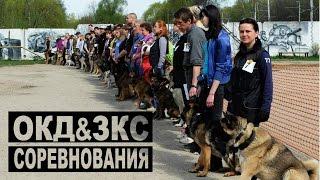 Соревнования с собаками по ОКД и ЗКС в Х-Легионе г. Долгопрудный