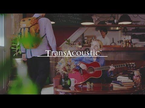 Yamaha TransAcoustic Guitar - FG-TA/FS-TA