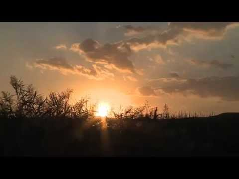 PXP Paramotor - Speed Race 2011 - The Video
