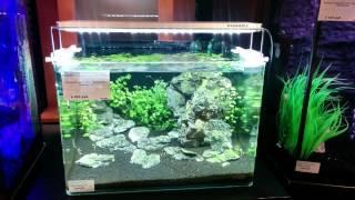 Светодиодный светильник для аквариумов DENNERLE Scapers LED(Подробнее о светильнике: http://all4aquarium.ru/ru/article/dennerle-scapers-led., 2015-03-03T18:06:28.000Z)