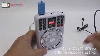 LoadSpeaker WS-1503 - обзор радиоприёмника с USB, SD и микрофоном