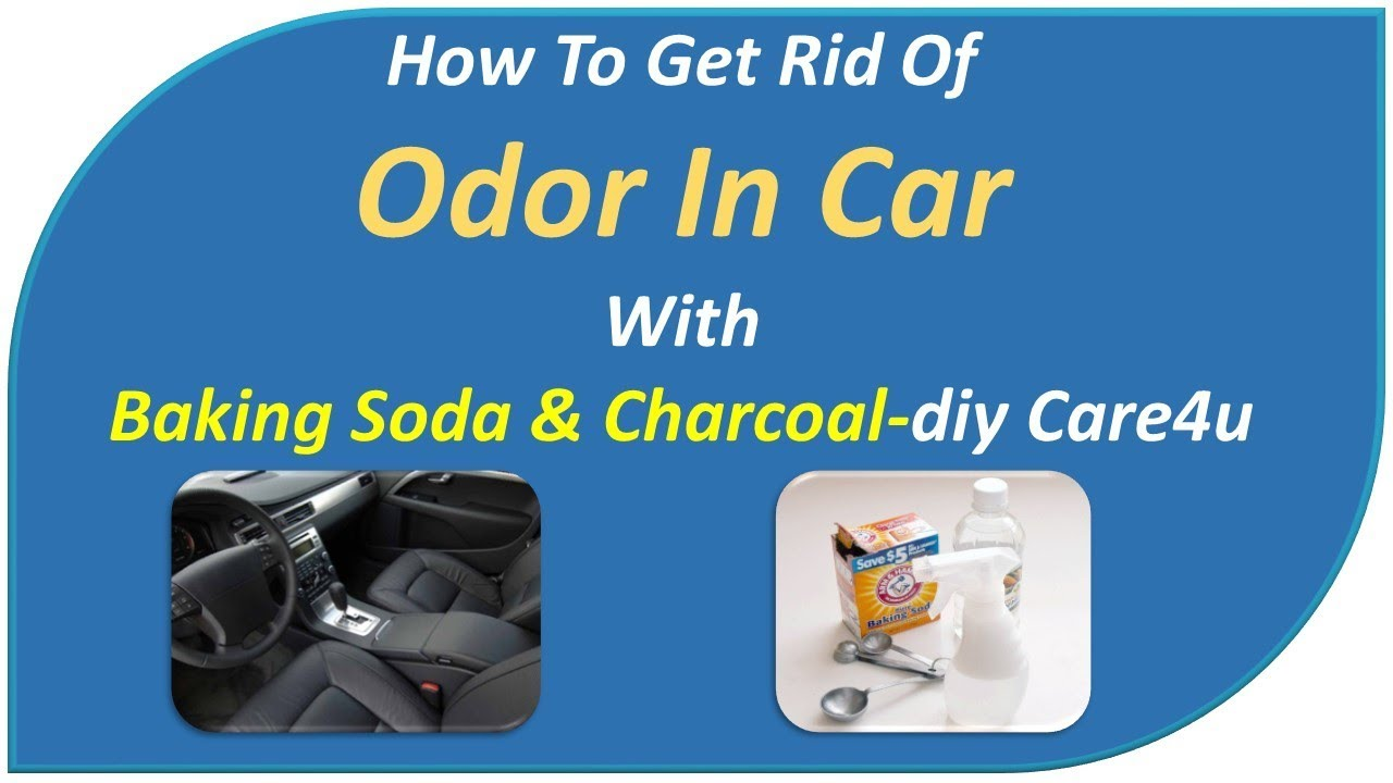 how to get rid of smelly car