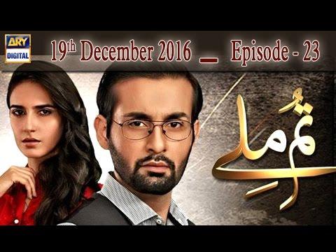 Tum Milay Ep 23 - 19th December 2016 - ARY Digital Drama