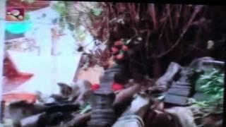 Sree Lakshmi Varaham Temple Trivandrum - 1