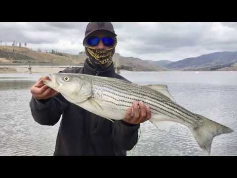05-12-2018 Striper fishing at Castaic Lake 8LB Striper action footage
