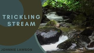 8 Hours Nature Meditation-Insomnia Relaxing by Johnnie Lawson-Nature Sounds-Birdsong-Killarney