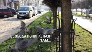 Новий автомобіль SEAT TARRACO у Львові