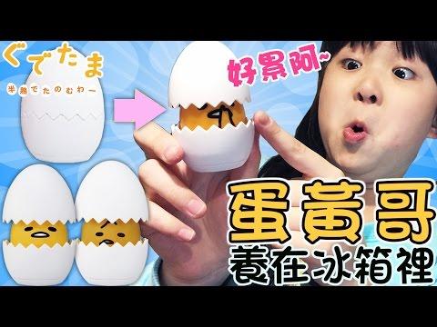 養在冰箱的蛋黃哥寵物/Gudetama hietama chan/ぐでたまひえたまちゃん [NyoNyoTV 妞妞TV]
