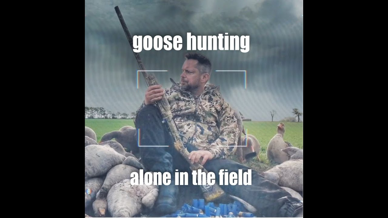Goose hunting - Alone in the field