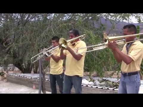 OJITOS NEGROS BANDA DE VIENTO Banda San Francisco de Huehuetlan el Chico