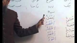 Arabi Grammar Lecture 10 Part 02 عربی  گرامر کلاسس