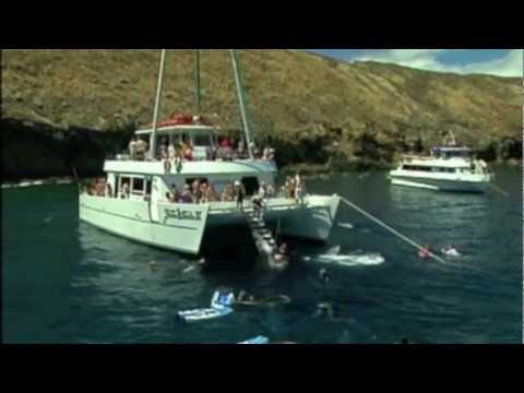 Maui Snorkeling to Molokini and Coral Gardens