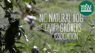 North Carolina Natural Hog Growers Association | Values Matter | Whole Foods Market
