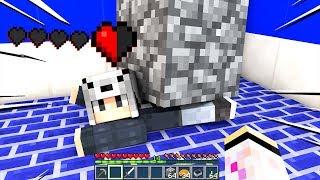 GIORGIO È STATO SCHIACCIATO DA UN SASSO!!! - Casa di Minecraft #26